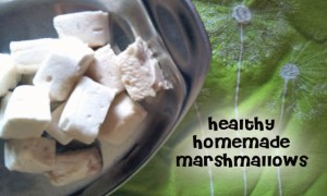 Healthy-Homemade-Marshmallow-Recipe-Can-even-add-probiotics-these-are-healthy-and-kids-love-them